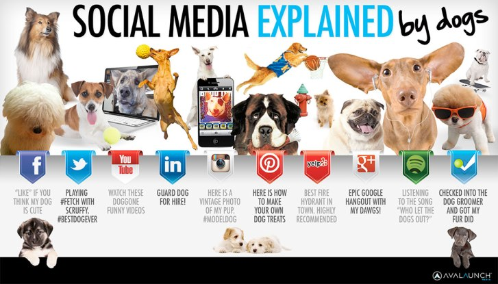 social-media-explained-by-dogs